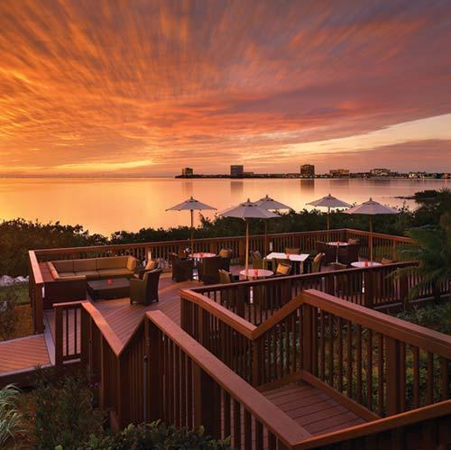 Grand Hyatt Tampa Bay Timeshare Resale And Rental